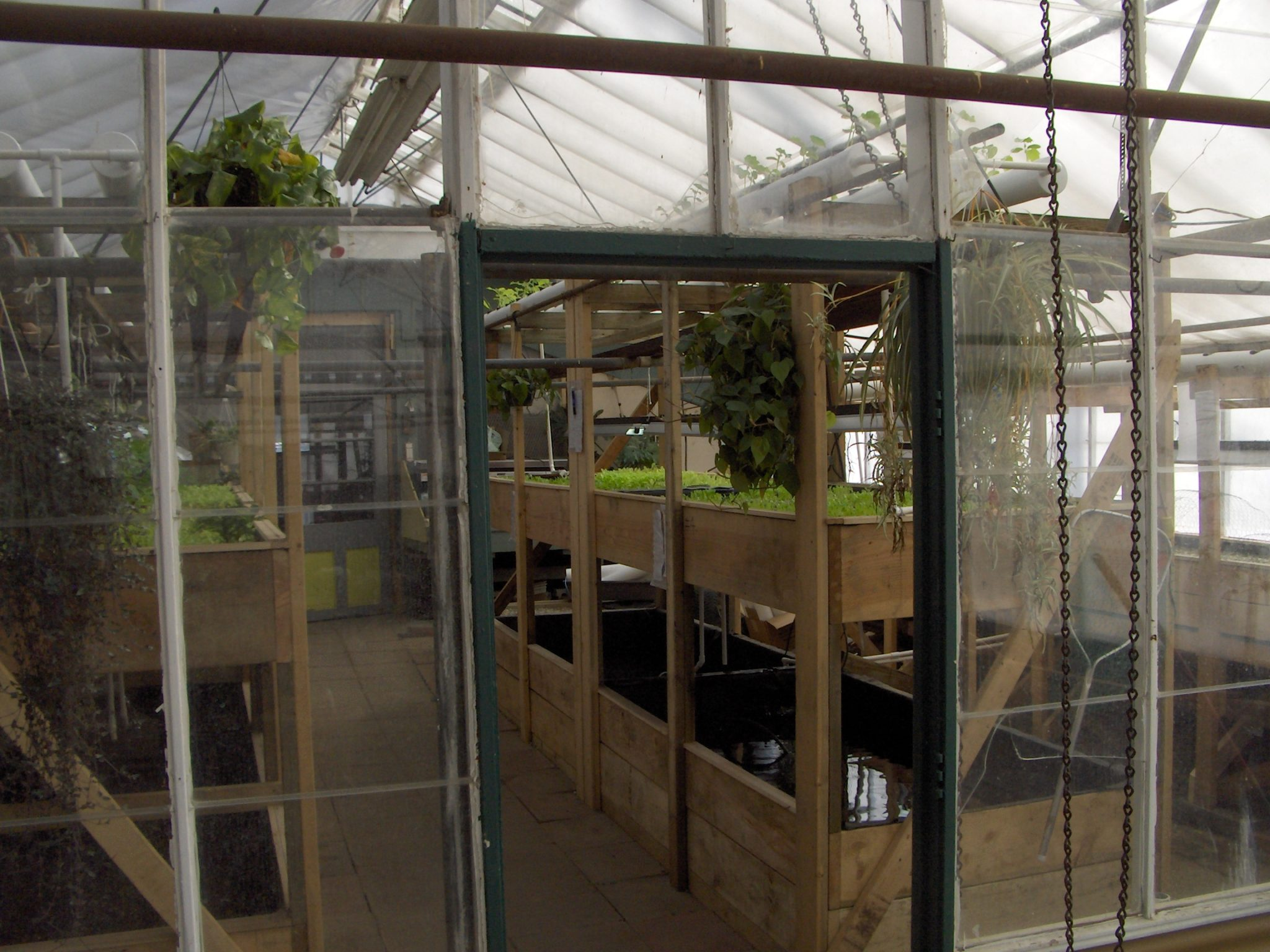 Principles Behind Aquaponics System Design